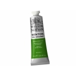 Õlivärv Winton 37ml 145 chrome green hue