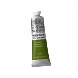 Õlivärv Winton 37ml 599 sap green