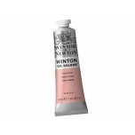Õlivärv Winton 37ml 257  Flesh Tint